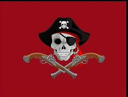 Flag 3X5 RED Color Cool Pirate Jolly Roger Buccaneer Theme P