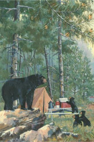 g160044 bears campsite nature wildlife double sided