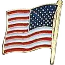 US Flag Store USA Flag Lapel Pin Standard Flag Series 3 with